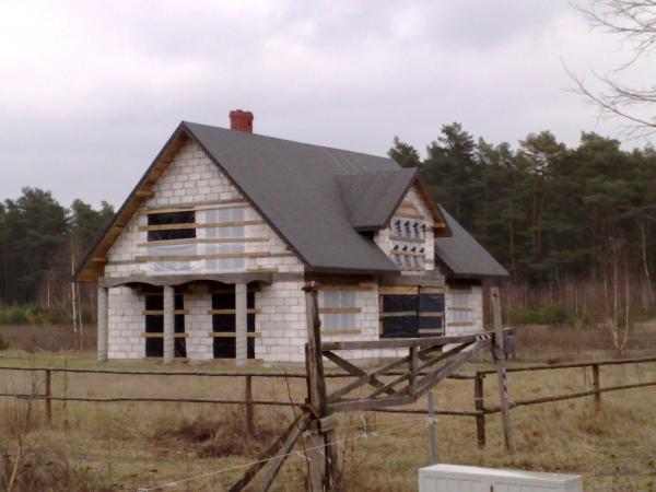 20080209068